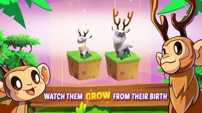 Zoo evolution game whach them grow